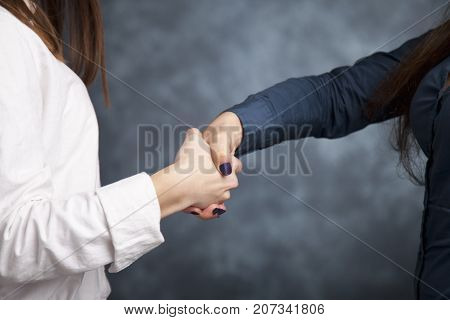 Handshake For For Successful Cooperation.two Businesswoman Shaking Hands As They Close A Deal Or Par