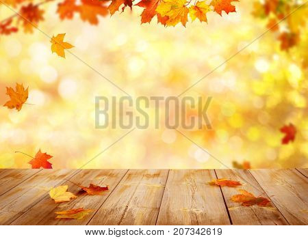 Colorful maple leaves on wooden  table.Falling leaves natural background