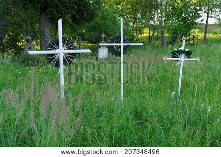 three overgrown crosses on the old neglected cemetery
