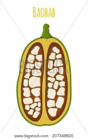 Baobab, organic nutrition, exotic detox fruit. Made in cartoon flat style. Vector illustration