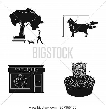Walking with a dog in the park, combing a dog, a veterinarian's office, bathing a pet. Vet clinic and pet care set collection icons in black style vector symbol stock illustration .