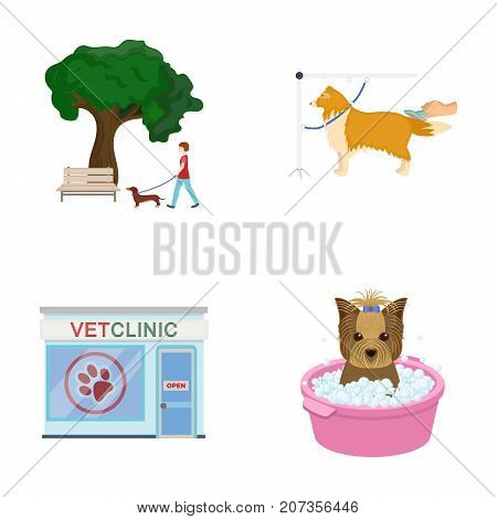 Walking with a dog in the park, combing a dog, a veterinarian's office, bathing a pet. Vet clinic and pet care set collection icons in cartoon style vector symbol stock illustration .