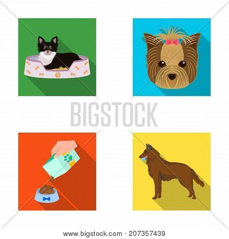 A dog in a lounger , a muzzle of a pet, a bowl with a feed, a sheepdog with a ball in his teeth. Pet, dog care set collection icons in flat style vector symbol stock illustration .