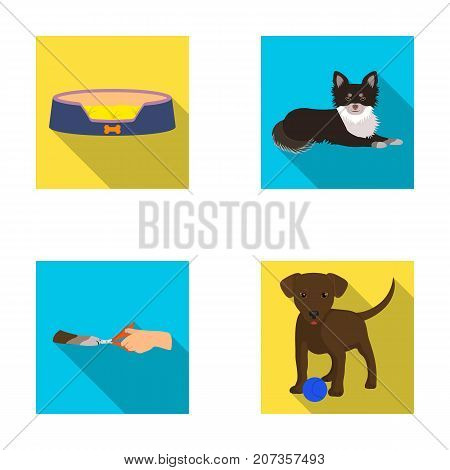 Lounger for a pet, clipping of claws in a vet clinic, lying dog, puppy with a ball. Vet clinic and pet, dog care set collection icons in flat style vector symbol stock illustration .