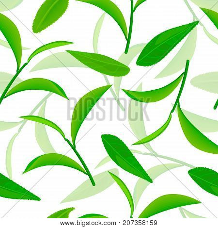 vividly flying green tea leaves, Seamless vector pattern. white background 3d illustration. Drawing of cartoon tea twigs. healthy drink, Can be used for cooking, tags, labels, textile