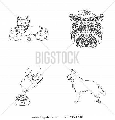 A dog in a lounger , a muzzle of a pet, a bowl with a feed, a sheepdog with a ball in his teeth. Pet, dog care set collection icons in outline style vector symbol stock illustration .