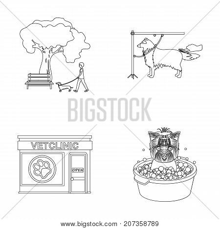 Walking with a dog in the park, combing a dog, a veterinarian's office, bathing a pet. Vet clinic and pet care set collection icons in outline style vector symbol stock illustration .