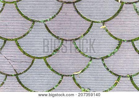 decorative paving tile on the sidewalk. background texture pattern.