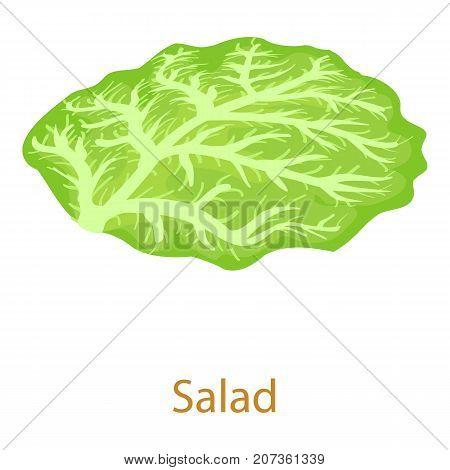 Salad icon. Isometric illustration of salad icon for web
