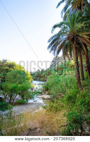 View of Kourtaliotis river and canyon near Preveli beach at Libyan sea, river and palm forest, southern Crete, Greece on August 26, 2017.
