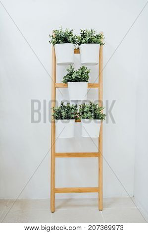 Plant stand with 5 plant pots bamboo white A decorative ladder plant stand to grow several plants together vertically. Interior design room decoration bathroom