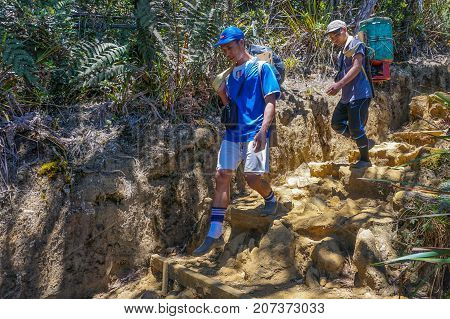Ranau,Sabah-March13,2016:Mountain porter carrying a heavy backpack & LPG cooking gas tank cylinders consumers from Laban Rata of the majestic Mount Kinabalu in Ranau,Sabah Borneo,Malaysia.