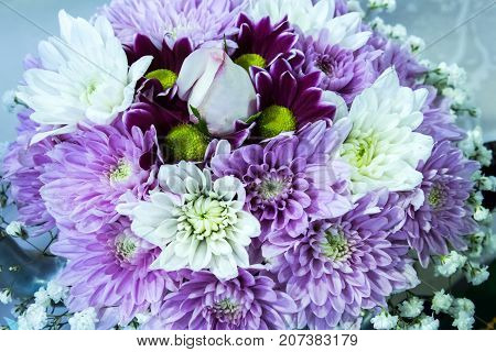 Purple and white posy bouquet of chrysanthemum flowers surrounding a single white rose