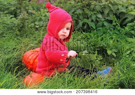 A Small Serious Child In A Purple Dwarf Suit Sits On The Grass Near A Huge Pumpkin And Looks In Fron