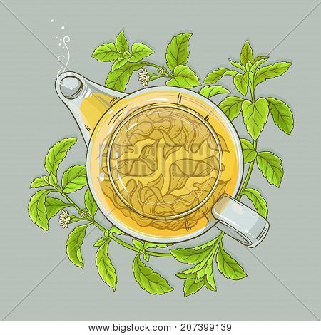 stevia tea in teapot on color background