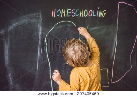 Homeschooling. The Boy Is Drawing Under Word Homeschooling On A Blackboard