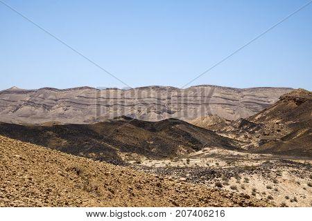 Black sands of the Negev desert with rare vegetation (Israel, Colored Sands)