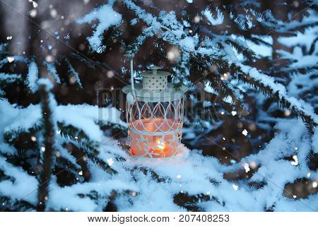 Decorative white Christmas lantern with burning candle on snow covered fir-tree branches in winter park.