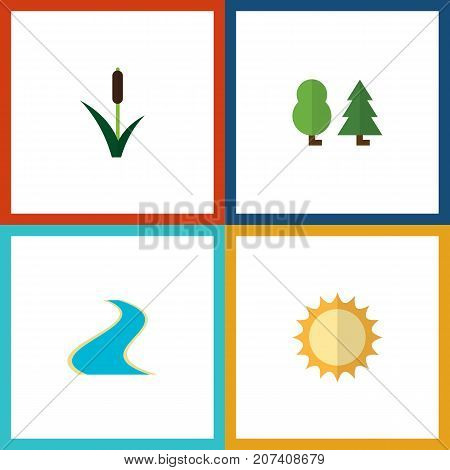 Flat Icon Nature Set Of Tributary, Solar, Cattail And Other Vector Objects