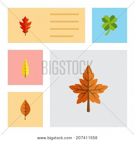 Flat Icon Leaf Set Of Foliage, Leafage, Alder And Other Vector Objects
