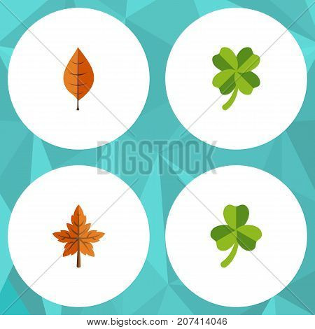 Flat Icon Leaves Set Of Foliage, Leafage, Alder And Other Vector Objects