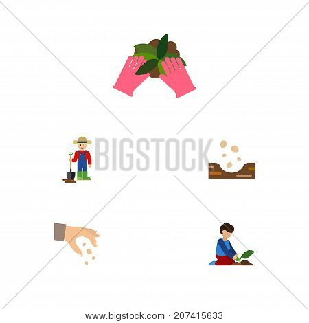 Flat Icon Sow Set Of Sow, Florist, Plant And Other Vector Objects