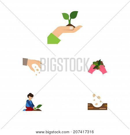 Flat Icon Sow Set Of Plant, Seed, Care And Other Vector Objects