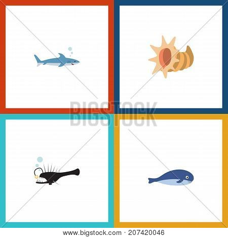 Flat Icon Marine Set Of Fish, Cachalot, Seashell And Other Vector Objects