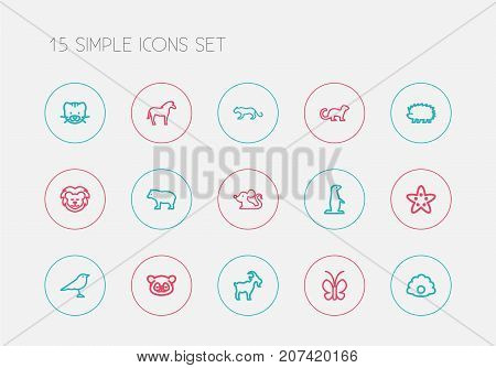 Set Of 15 Editable Animal Outline Icons. Includes Symbols Such As Bobcat, Rat, Lion And More