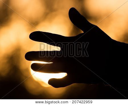hand on a background of a sunset