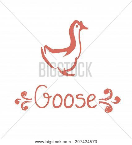 goose vector illustration. hand drawn sketch sketch of gourmet cuisine poultry