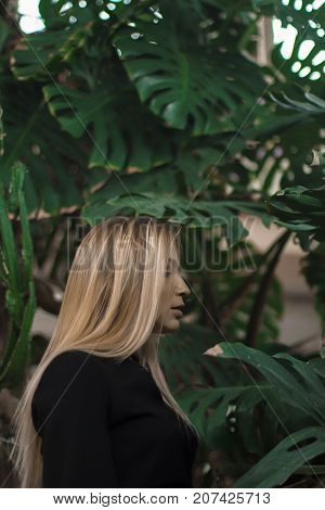 Girl with California highlights. She stands against the background of large leaves. Trend leaves. Fashionable background. Sexy slender girl.