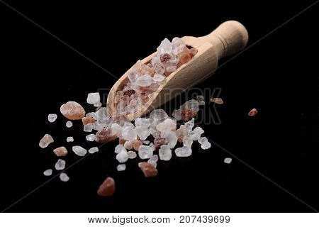Spice Scoop With Salt