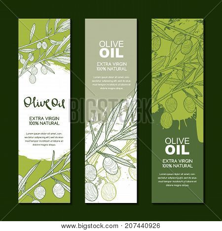 Set Of Vector Backgrounds For Label, Package. Illustration Of Olive Branch. Agriculture, Olive Oil A