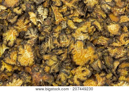 Closeup sliced dried Szechuan lovage in yellow brown, flowering plant used as traditional Chinese medicine (Ligusticum striatum)