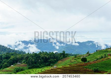Panorama Dramatic View Of Valley With Mist Over The Mountain And Cloudy Sky Background In The Mornin