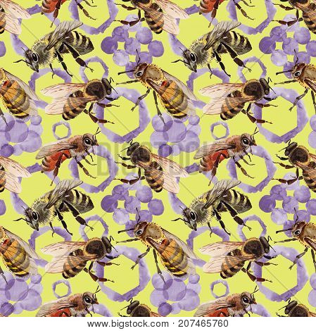 Exotic bee wild insect pattern in a watercolor style. Full name of the insect: bee, honeybee. Aquarelle wild insect for background, texture, wrapper pattern or tattoo.