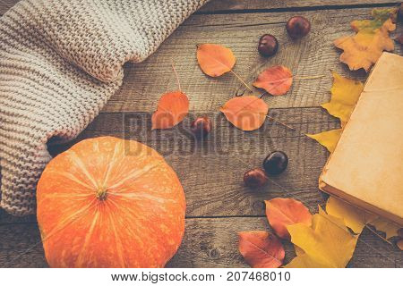 Autumn Leaves, Open Book And Pumpkin On Wooden Board.