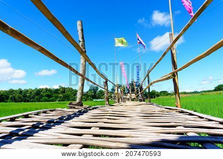 Close Up Of Rural Bamboo Bridge Path To Rice Paddy Fields With Blue Sky And Fluffy Cloud In Sunny Da