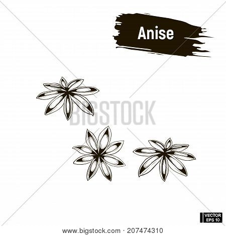 Outline Image, Anise.