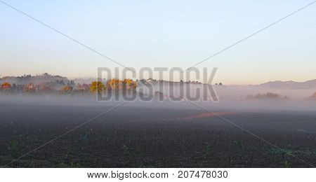 Foggy Day With Cultivated Field In Autumn