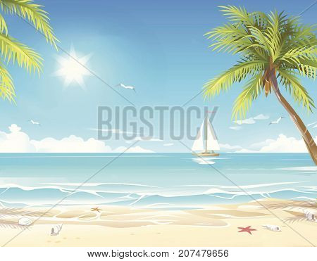Summer sunny beach with tropical palm tres under blue sky