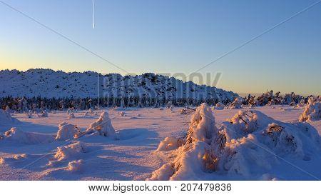 Winter landscape. Snow capped mountains and trees. Sunset sky and a falling star.