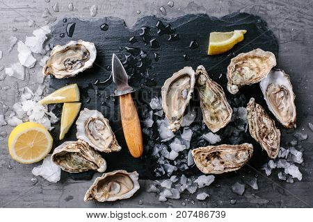 Top view of oysters with lemon and knife for oysters on a slate board on a dark background