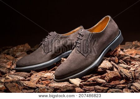 Brown shoes for autumn on wood bark background