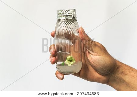 Researcher hand with test tube with in vitro cloned microplant in nutrient medium, research bioengineering gmo concept