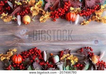 Fall background. Seasonal fall nature berries pumpkins apples and fall flowers on the wooden background. Fall concept with free space. Fall still life. Natural fall background. Fall composition