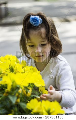 portrait of little girl with blossoming flowers of common evening-primrose