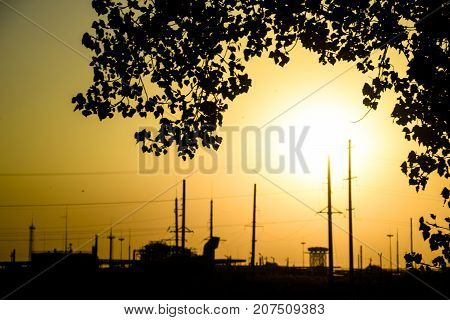Industrial Plant In The Background Of Sunset And Poplar Branches. Yellow Sunset.
