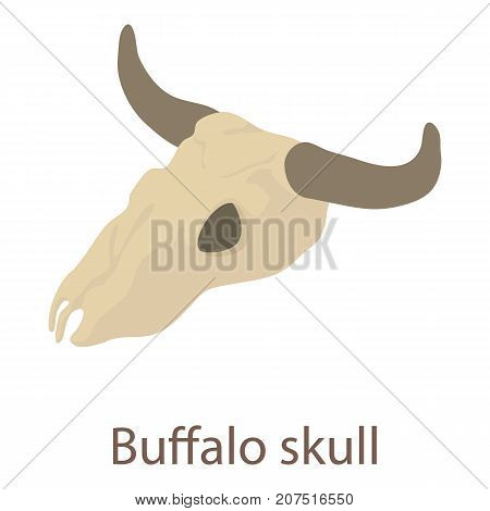 Buffalo skull icon. Isometric illustration of buffalo skull icon for web